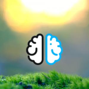 Logo_EF (3)